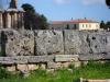 DSCN5250